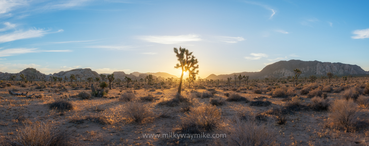 Morning Hike In Joshua Tree National Park