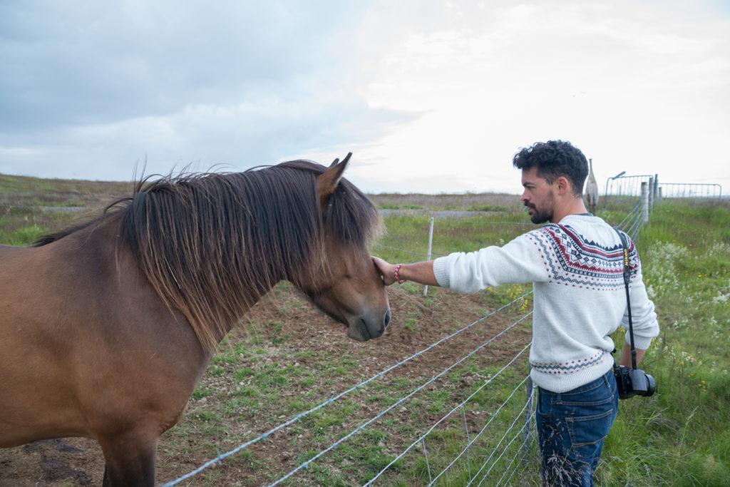 Remi the horse whisperer